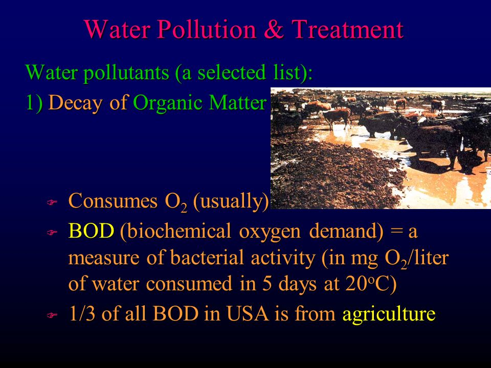 Water pollutants (a selected list): 5) Toxic substances F Biological Magnification Water Pollution & Treatment