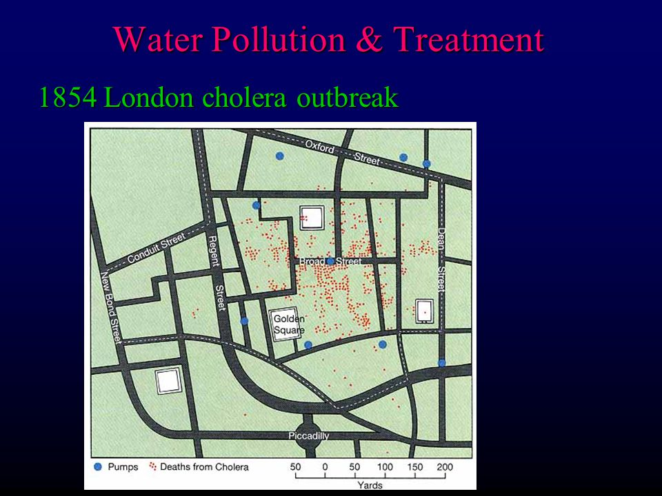 Water pollutants (a selected list): 3) Nutrients F P, N from fertilizers, detergents, sewage (even if treated) Water Pollution & Treatment