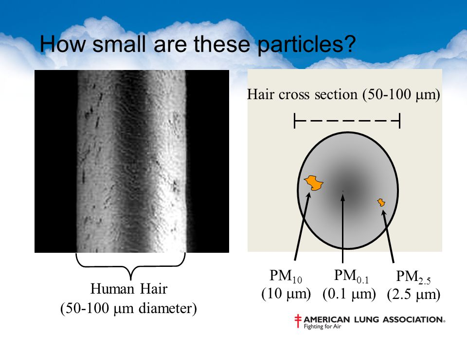 How small are these particles? Human Hair (50-100  m diameter) PM 10 (10  m) PM 2.5 (2.5  m) Hair cross section (50-100  m) PM 0.1 (0.1  m)