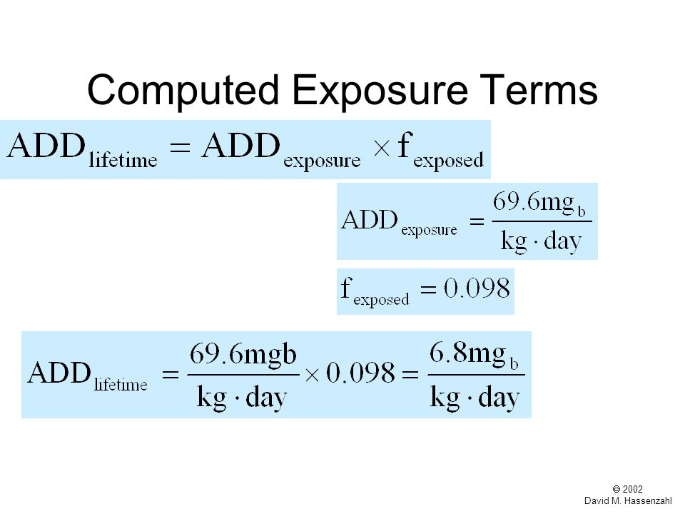  2002 David M. Hassenzahl Computed Exposure Terms