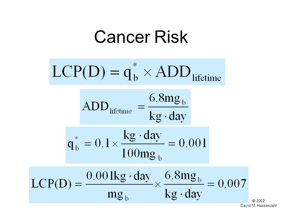  2002 David M. Hassenzahl Cancer Risk