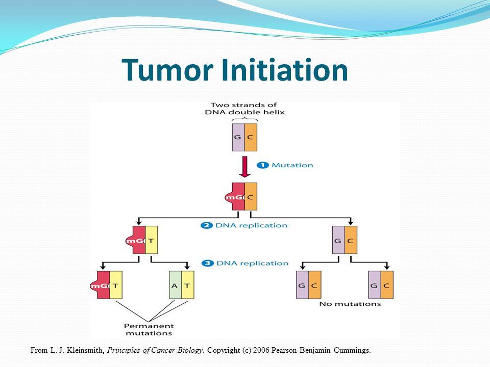 From L. J. Kleinsmith, Principles of Cancer Biology. Copyright (c) 2006 Pearson Benjamin Cummings. Tumor Initiation