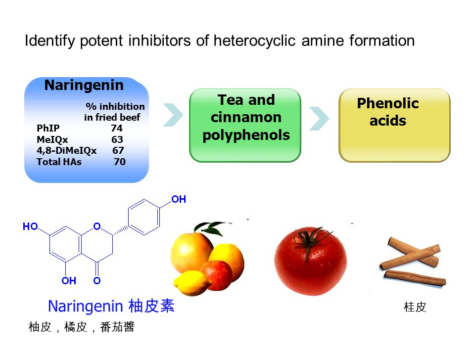 Postulated inhibitory mechanism of naringenin in PhIP formation Carcinogen 致癌物 Non-carcinogen 阻斷形成 防癌化合物 Cpd2 誘導形成