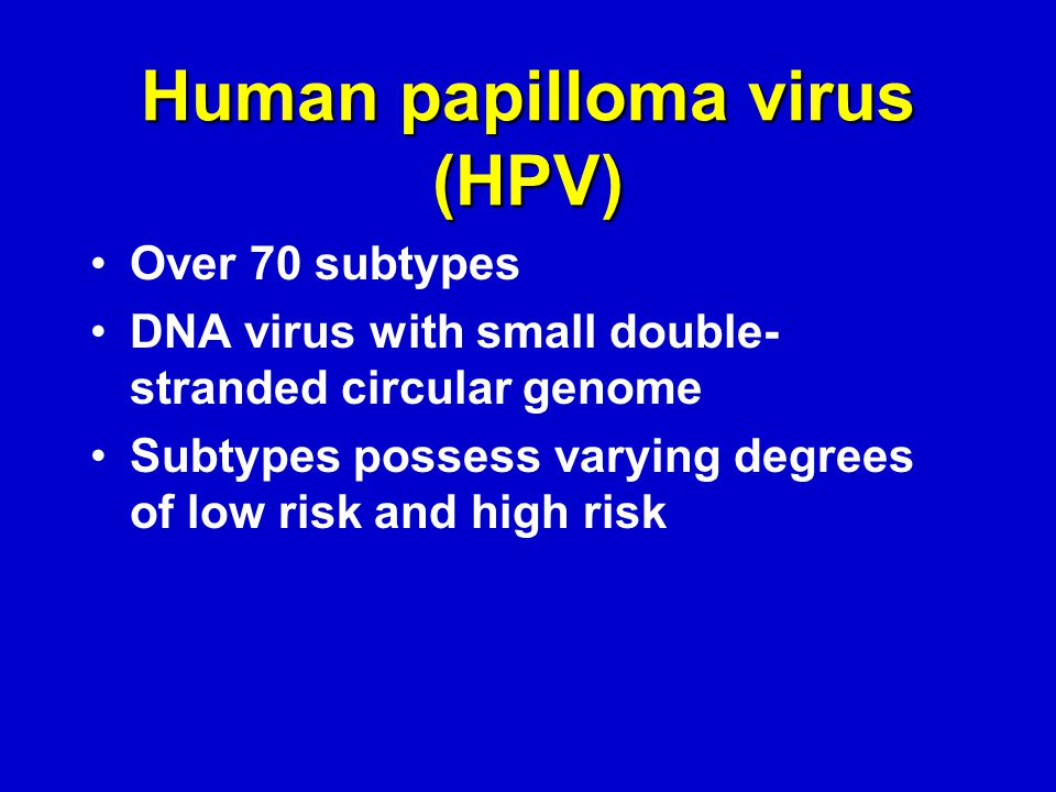 Human papilloma virus (HPV) Over 70 subtypes DNA virus with small double- stranded circular genome Subtypes possess varying degrees of low risk and high risk