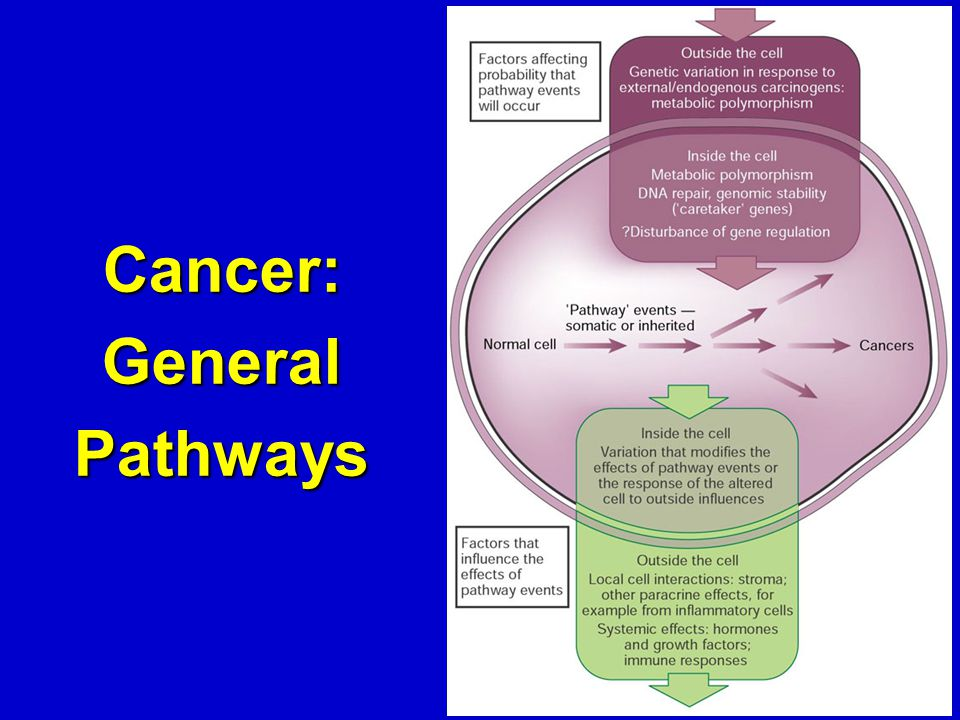 Cancer: General Pathways