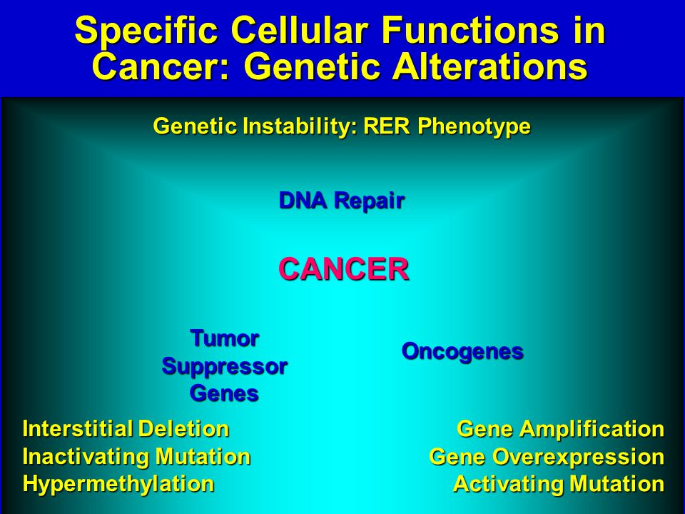 DNA Repair Tumor Suppressor Genes Oncogenes Interstitial Deletion Inactivating Mutation Hypermethylation Gene Amplification Gene Overexpression Activating Mutation Genetic Instability: RER Phenotype CANCER Specific Cellular Functions in Cancer: Genetic Alterations