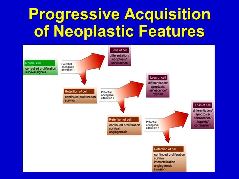 Progressive Acquisition of Neoplastic Features
