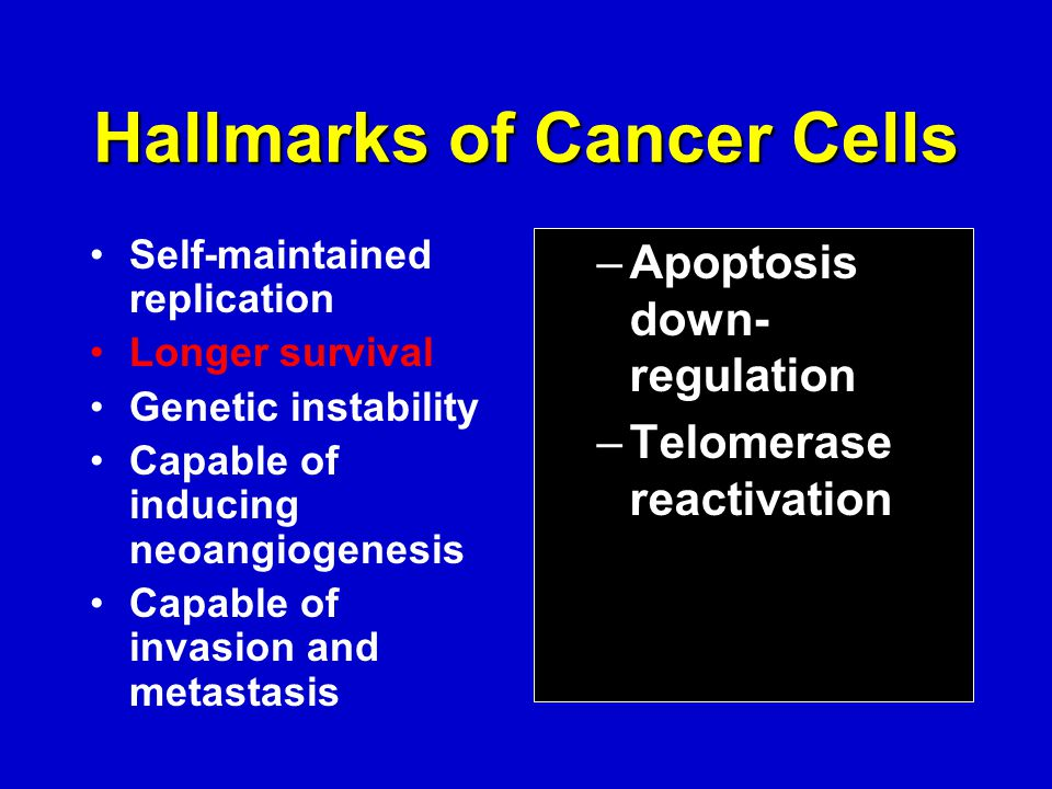 Hallmarks of Cancer Cells Self-maintained replication Longer survival Genetic instability Capable of inducing neoangiogenesis Capable of invasion and metastasis –Apoptosis down- regulation –Telomerase reactivation