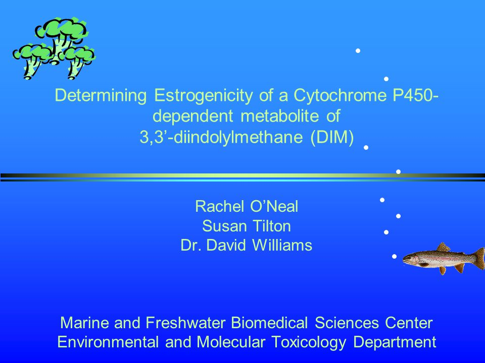Determining Estrogenicity of a Cytochrome P450- dependent metabolite of 3,3'-diindolylmethane (DIM) Rachel O'Neal Susan Tilton Dr.