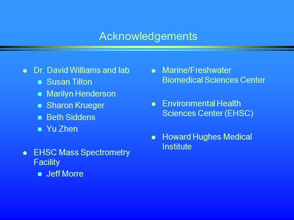 Acknowledgements Dr. David Williams and lab Susan Tilton Marilyn Henderson Sharon Krueger Beth Siddens Yu Zhen EHSC Mass Spectrometry Facility Jeff Mo
