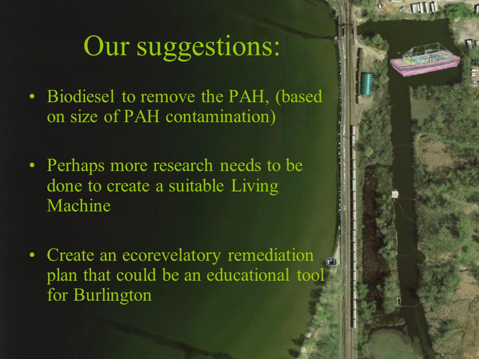 Our suggestions: Biodiesel to remove the PAH, (based on size of PAH contamination) Perhaps more research needs to be done to create a suitable Living Machine Create an ecorevelatory remediation plan that could be an educational tool for Burlington