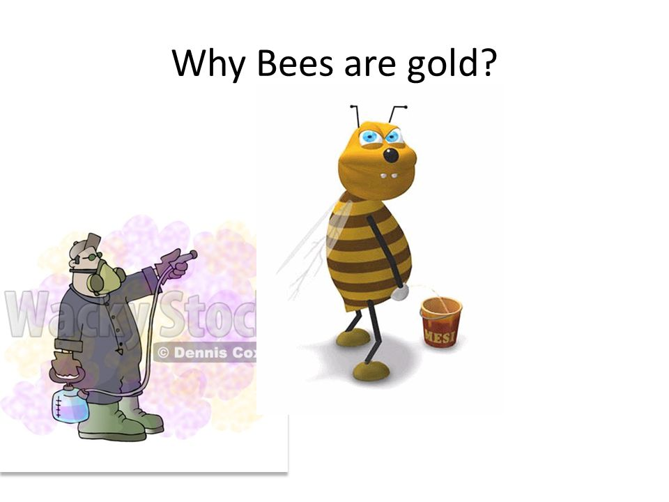 Why Bees are gold