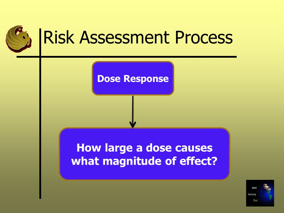 Risk Assessment Process Dose Response How large a dose causes what magnitude of effect?