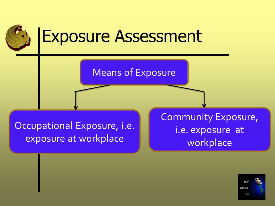 Means of Exposure Occupational Exposure, i.e. exposure at workplace Community Exposure, i.e. exposure at workplace Exposure Assessment