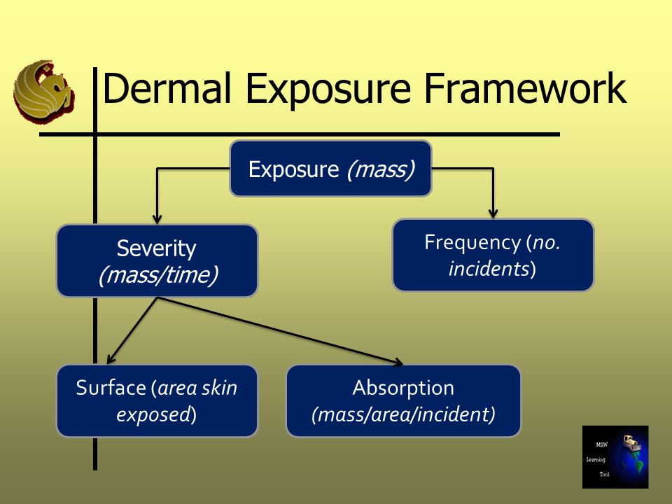 Exposure (mass) Severity (mass/time) Absorption (mass/area/incident) Surface (area skin exposed) Frequency (no. incidents) Dermal Exposure Framework