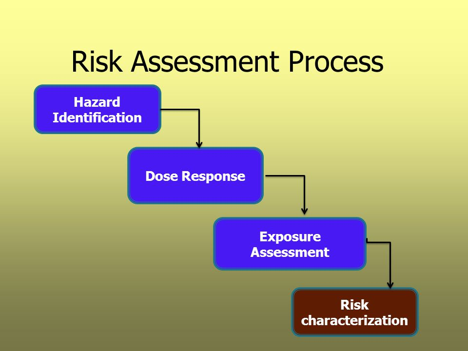 Risk Assessment Process Hazard Identification Dose Response Exposure Assessment Risk characterization
