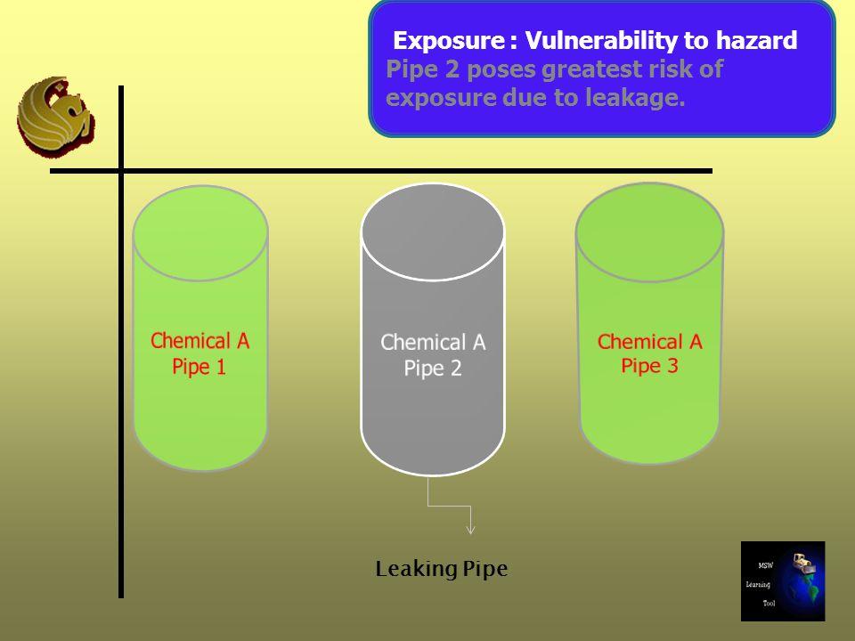 Lungs Exposure (Inhalation ) Routes of Exposure Dermal Exposure (Skin) Ingestion