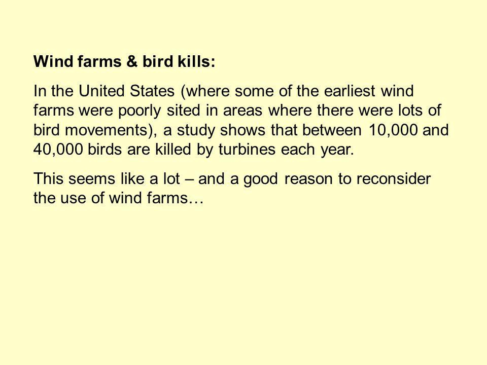 Wind farms & bird kills