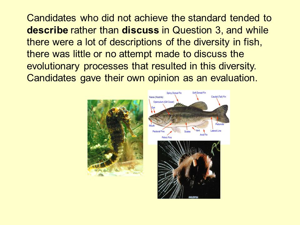 Candidates who did not achieve the standard tended to describe rather than discuss in Question 3, and while there were a lot of descriptions of the diversity in fish, there was little or no attempt made to discuss the evolutionary processes that resulted in this diversity.