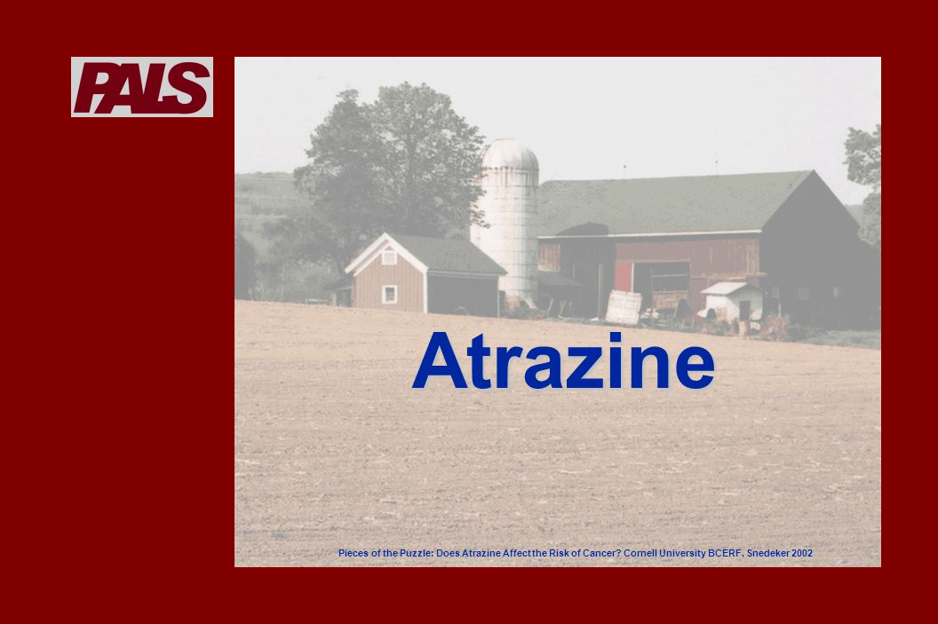 Most widely used herbicide in the US First registered for use in 1959First registered for use in 1959 Annual crop land usageAnnual crop land usage –Up to 77.3 million lbs active ingredient* * Source: Asplein, 1999 Atrazine – usage
