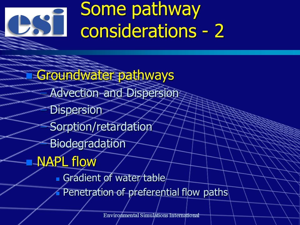 Environmental Simulations International Some pathway considerations - 2 n Groundwater pathways –Advection and Dispersion –Dispersion –Sorption/retardation –Biodegradation n NAPL flow n Gradient of water table n Penetration of preferential flow paths