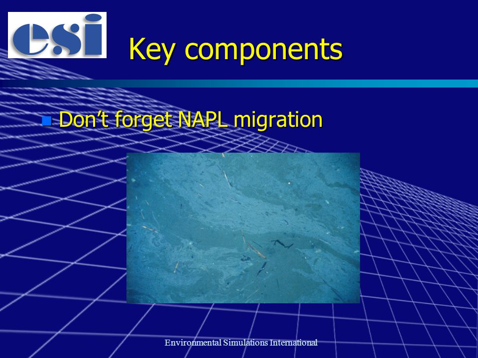 Environmental Simulations International Key components n Don't forget NAPL migration