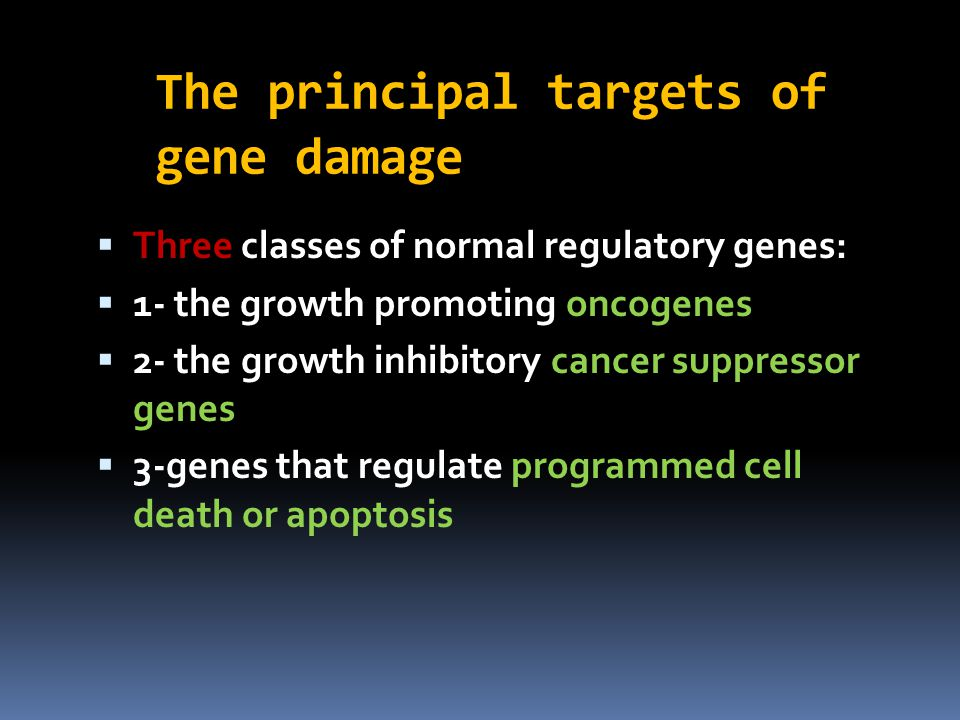 The principal targets of gene damage  Three classes of normal regulatory genes:  1- the growth promoting oncogenes  2- the growth inhibitory cancer suppressor genes  3-genes that regulate programmed cell death or apoptosis