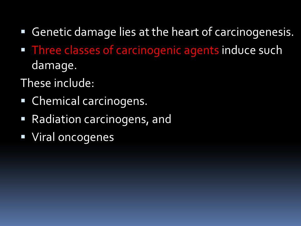  Genetic damage lies at the heart of carcinogenesis.