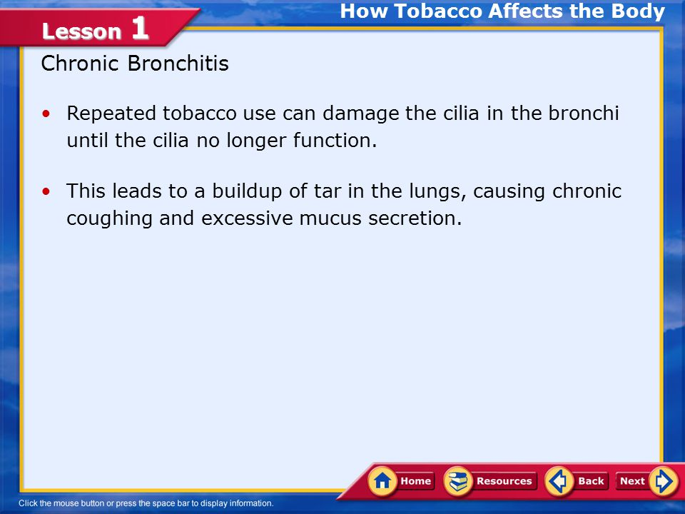 Lesson 1 Long-Term Effects of Tobacco Use Chronic Bronchitis Emphysema Lung Cancer Coronary Heart Disease and Stroke How Tobacco Affects the Body