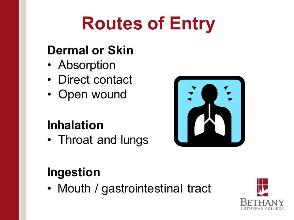 Routes of Entry Dermal or Skin Absorption Direct contact Open wound Inhalation Throat and lungs Ingestion Mouth / gastrointestinal tract
