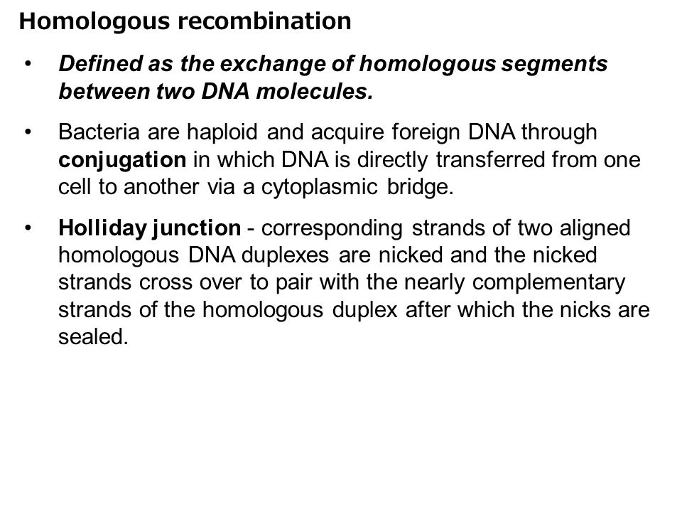 Homologous recombination Defined as the exchange of homologous segments between two DNA molecules.