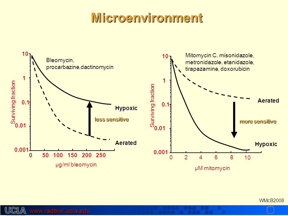 www.radbiol.ucla.edu WMcB2008 Microenvironment 0.001 0.01 0.1 1 10 050100150200250 Surviving fraction µg/ml bleomycin Aerated Bleomycin, procarbazine,dactinomycin Hypoxic less sensitive 10 µM mitomycin Aerated Mitomycin C, misonidazole, metronidazole, etanidazole, tirapazamine, doxorubicin Hypoxic more sensitive 0.001 0.01 0.1 1 10 02468 Surviving fraction