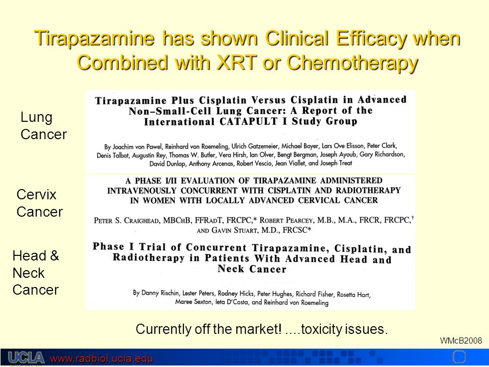 www.radbiol.ucla.edu WMcB2008 Lung Cancer Cervix Cancer Head & Neck Cancer Tirapazamine has shown Clinical Efficacy when Combined with XRT or Chemotherapy Currently off the market!....toxicity issues.