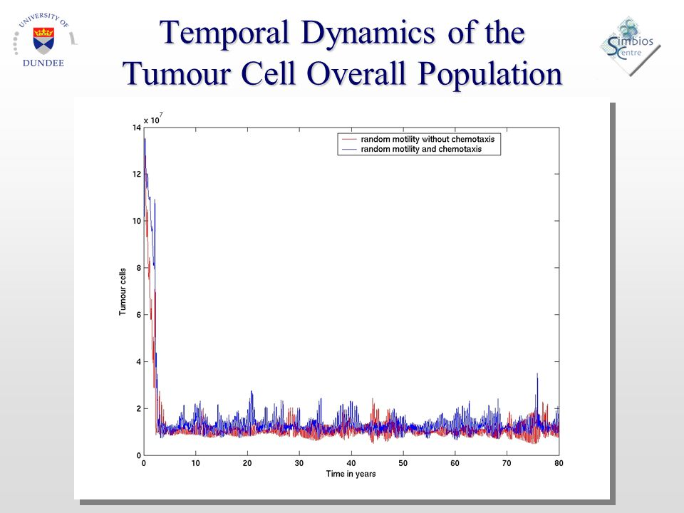 Temporal Dynamics of the Tumour Cell Overall Population