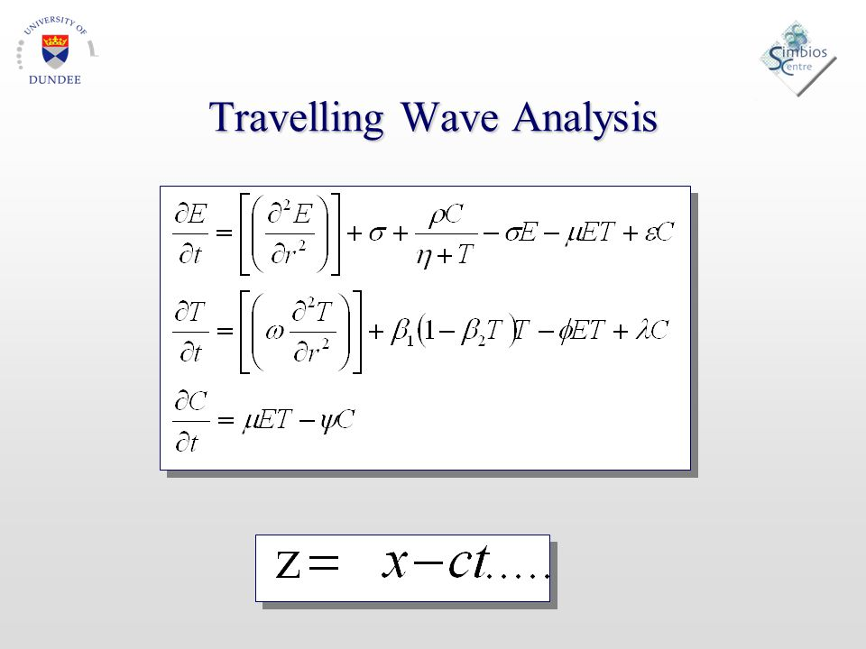 Travelling Wave Analysis