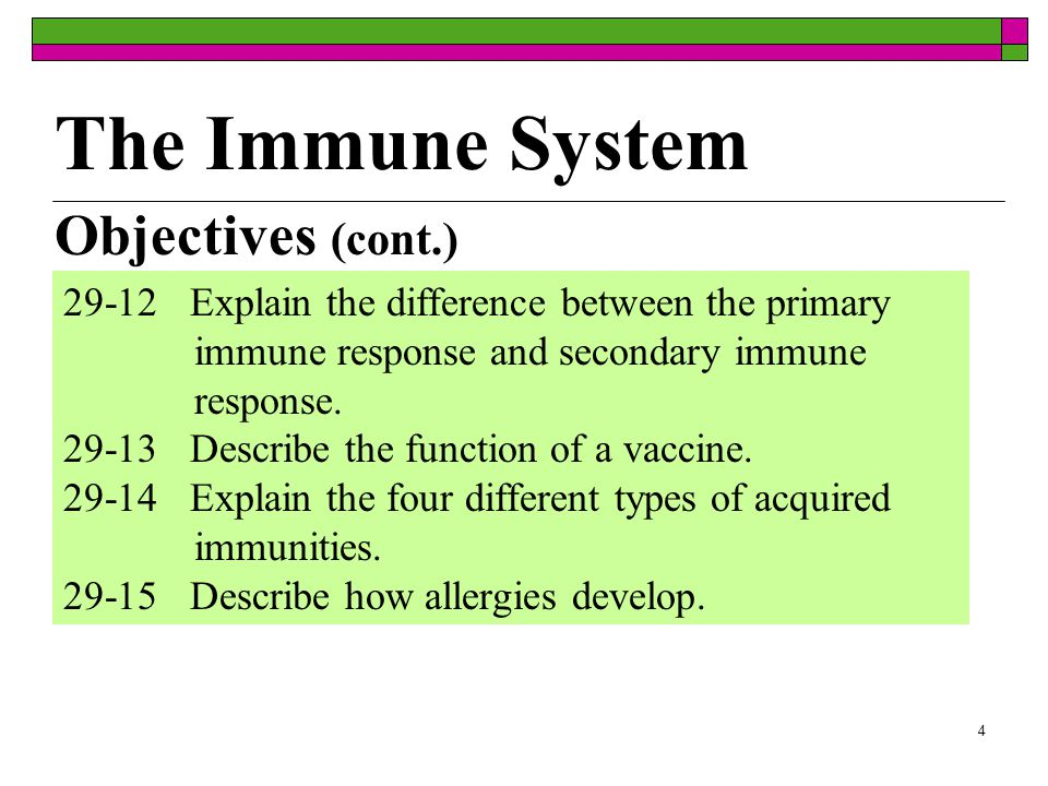 3 Objectives (cont.) 29-6Define B cells and T cells and describe their locations and functions.