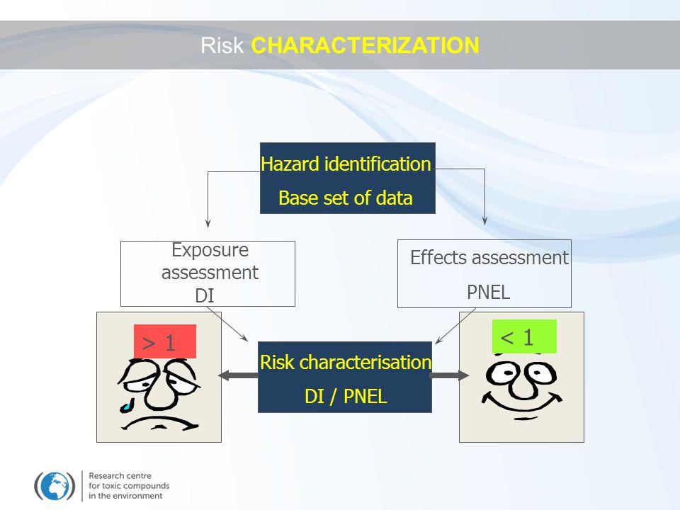 Hazard identification Base set of data Exposure assessment Effects assessment DI PNEL Risk characterisation DI / PNEL > 1 < 1 Risk CHARACTERIZATION