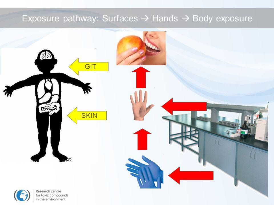 Exposure pathway: Surfaces  Hands  Body exposure SKIN GIT