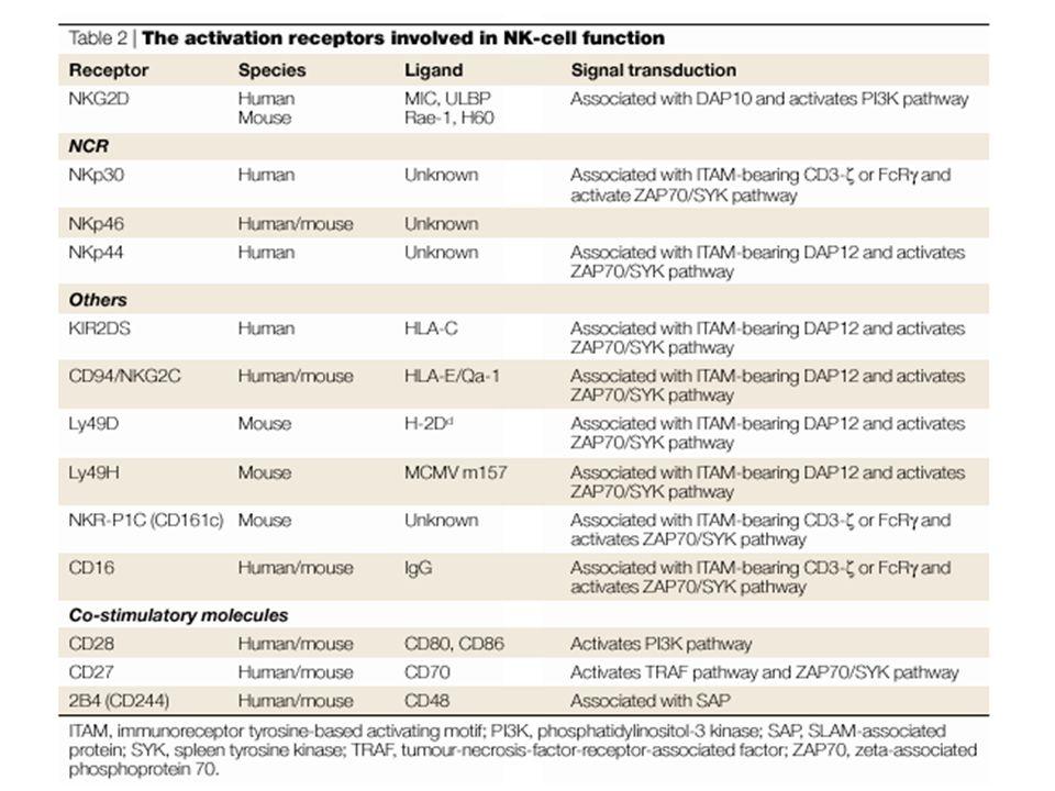 Cancer Immunoediting