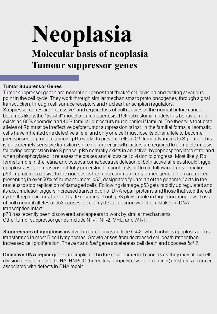Tumor Suppressor Genes Tumor suppressor genes are normal cell genes that brake cell division and cycling at various point in the cell cycle.
