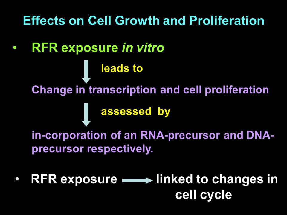 Effects on Cell Growth and Proliferation RFR exposure in vitro leads to Change in transcription and cell proliferation assessed by in-corporation of an RNA-precursor and DNA- precursor respectively.