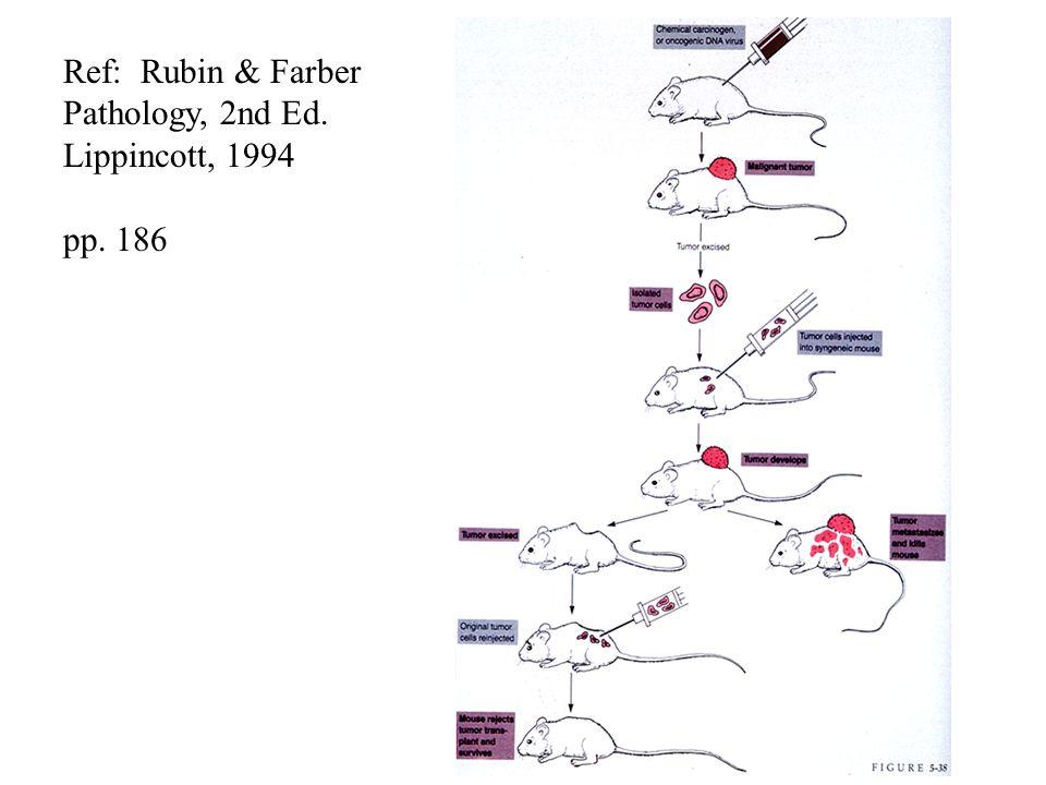 Ref: Rubin & Farber Pathology, 2nd Ed. Lippincott, 1994 pp. 186