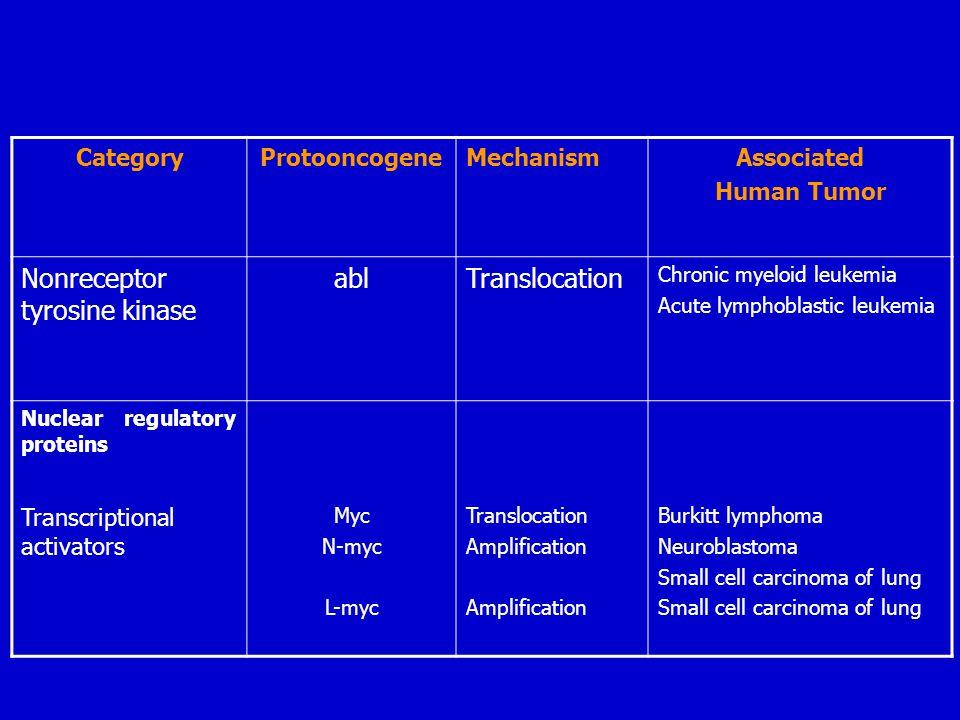 CategoryProtooncogeneMechanismAssociated Human Tumor Nonreceptor tyrosine kinase ablTranslocation Chronic myeloid leukemia Acute lymphoblastic leukemi