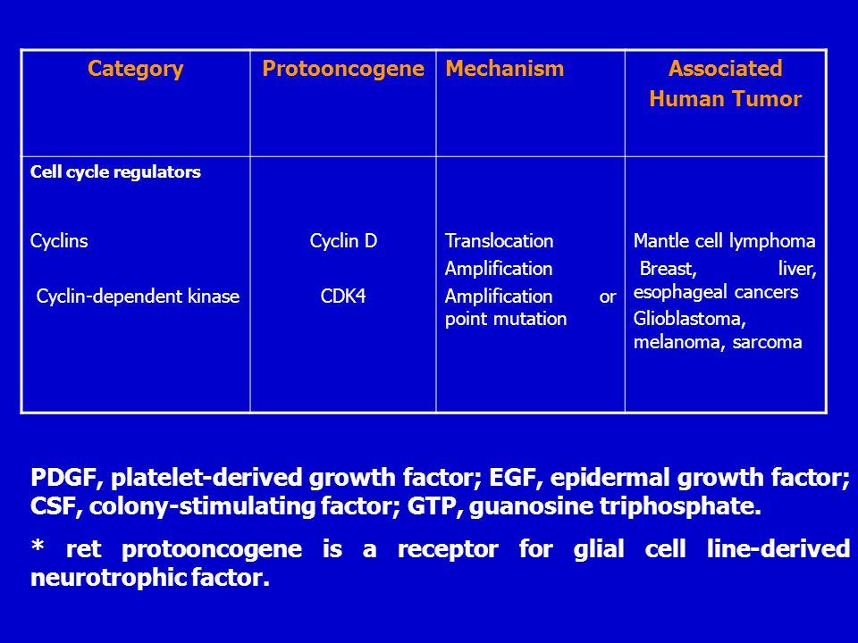 CategoryProtooncogeneMechanismAssociated Human Tumor Cell cycle regulators Cyclins Cyclin-dependent kinase Cyclin D CDK4 Translocation Amplification A