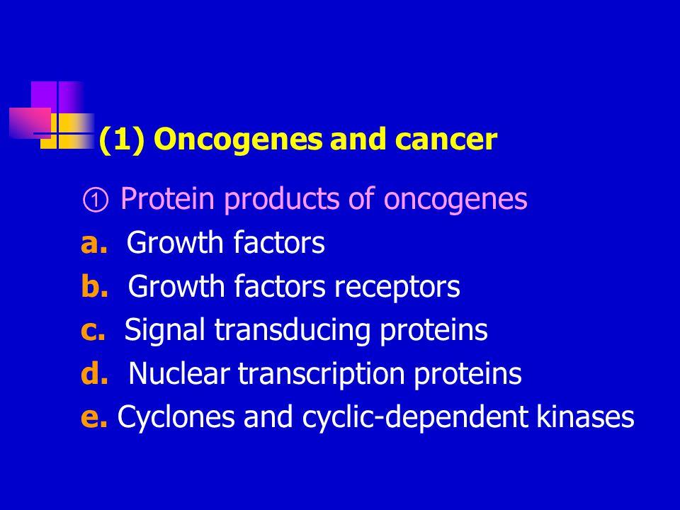 ② Molecules that regulated signal transduction NF-1 gene: 17q11.2 APC gene: 5q21
