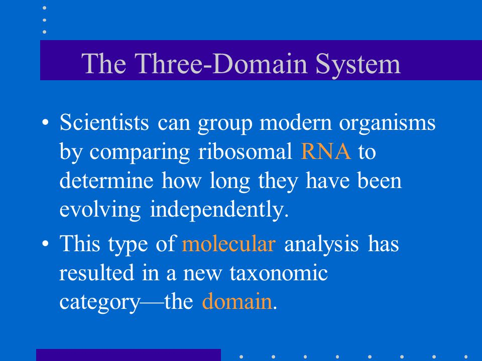 The Three-Domain System Scientists can group modern organisms by comparing ribosomal RNA to determine how long they have been evolving independently.