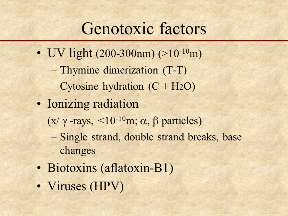 Genotoxic factors UV light (200-300nm) (>10 -10 m) –Thymine dimerization (T-T) –Cytosine hydration (C + H 2 O) Ionizing radiation (x/  -rays, <10 -10 m; ,  particles) –Single strand, double strand breaks, base changes Biotoxins (aflatoxin-B1) Viruses (HPV)