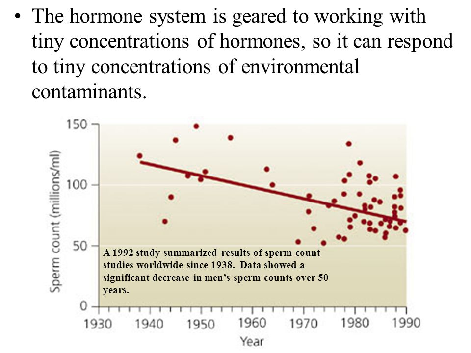 The hormone system is geared to working with tiny concentrations of hormones, so it can respond to tiny concentrations of environmental contaminants.