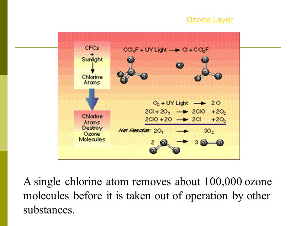 A single chlorine atom removes about 100,000 ozone molecules before it is taken out of operation by other substances.