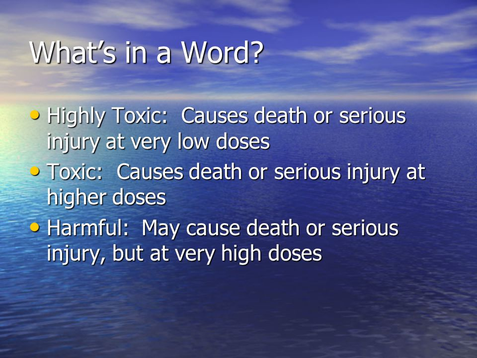 What's in a Word.